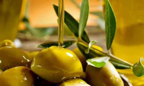 Польза маслин консервированных, возможный вред,