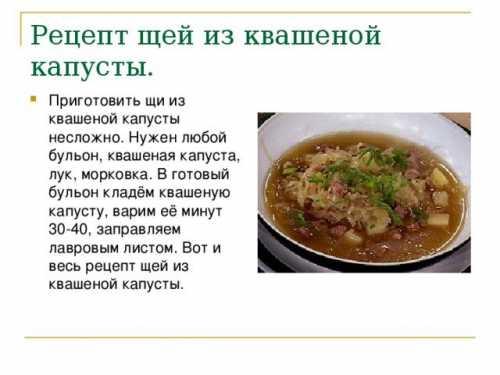 Щи - рецепты приготовления