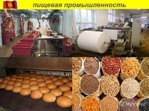 Достижения химической промышленности в хранении пищевых продуктов